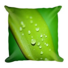 Droplets On A Leaf Square Pillow