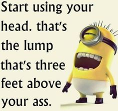 Start using your head. That's the lump that's three feet above your ass. - minion