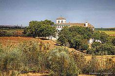 Photographs taken at the Hacienda El Santiscal (Ecohotel), Arcos de la Frontera, Spain with the kind permission of the proprietor Francisca Gallardo.  For more information about this beautiful Hacienda;  Espanol:  http://www.santiscal.com/index.html  English:  http://www.santiscal.com/en/index.html