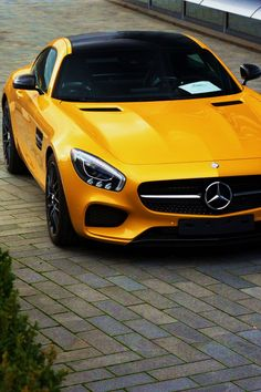 AMG GT | Petrol Flows Through My Veins