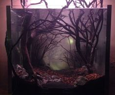 Dark and Eerie Fish Tank Instructables DIY