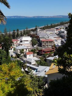 Napier, New Zealand  was a fun Christmas New Years Holiday trip many years ago