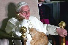 The Pope likes cats. How sweet!