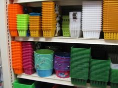 Dollar store for organizing containers