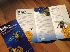 Flyer für Fotoausstellung Bienen Bees im Naturkundemuseum Karlsruhe