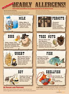 Food Allergy Poster Excellent visual and reminder for food allergy awareness. Laminated X Great addition to your classroom, office, kitchen and cafeteria. Symptoms Of Allergic Reaction, Health Communication, Food Plus, Nurse Office, Peanut Allergy, School Health, Nut Allergies, Milk And Eggs, Food Labels