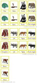 manufaktura montessoriańska: Afryka, Azja, Ameryka Południowa... karty ze zwierzętami Montessori Montessori