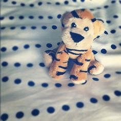 """""""#marchphotoaday Day 30 