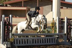 Just in time for Throwback Thursday, one JMR fan shared this adorable photo from her pony hunter days. Precious!