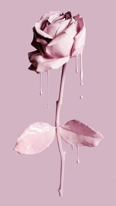 The most beautiful wallpapers are here! We have picked lovely phone wallpapers for you one Travel Wallpaper, Pastel Wallpaper, Tumblr Wallpaper, Flower Wallpaper, Screen Wallpaper, Wallpaper Quotes, Pink Makeup Wallpaper, Painting Wallpaper, Nature Wallpaper