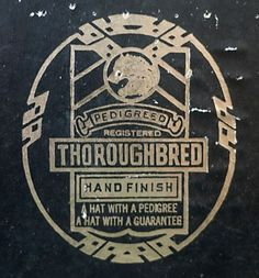 THOROUGHBRED - Logo type inspiration / repinned on toby designs