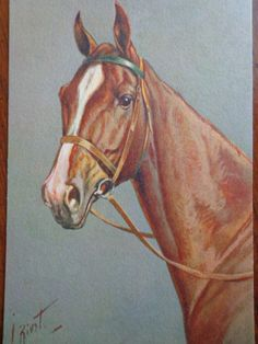 Vintage HORSE postcardChestnut horse artist by PUGHALLVINTAGE, $6.00