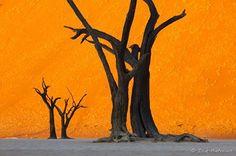 Namibia. BelAfrique your personal travel planner - www.BelAfrique.com