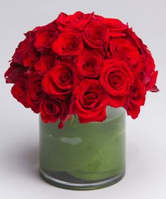 Enamored Red Roses