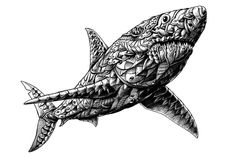 BIOWORKZ is a Graphic Artist and Freelance Illustrator providing professional artwork, designs, and illustrations. Tribal Shark, Tribal Tiger, Shark Art, Shark Coloring Pages, Adult Coloring Pages, Polynesian Tattoo Designs, Tattoo Designs Men, Polynesian Art, Hai Tattoos