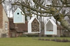 bird house and insect hotel