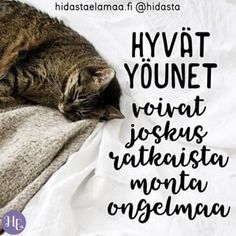 Carpe Diem Quotes, Finnish Words, Happy Vibes, More Words, Pretty Words, Texts, Poems, Life Quotes, Inspirational Quotes