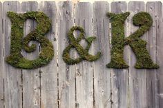 How to DIY moss letters. Cute