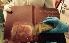 Madrid: Los hongos dañan 1.000 libros de la Biblioteca Histórica Municipal | Madrid | EL PAÍS