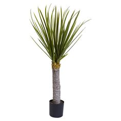 Nearly Natural 3 ft. Yucca Silk Tree - 5438