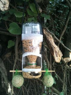 Beautiful PET Bottle Feeders for Birds Homemade Bird Feeders, Diy Bird Feeder, Diy Jardim, Bird Seed Ornaments, Orchid Pot, Bird Houses Diy, How To Attract Birds, Pet Bottle, Upcycled Crafts