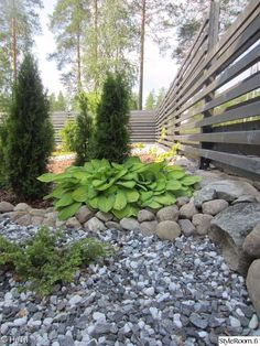 Fish Scale Tile, Nordic Chic, Diy Carpet Cleaner, Landscaping With Rocks, Autumn Garden, Garden Inspiration, Landscape Design, Home And Garden, Yard