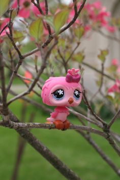 Pink Owl in the Park by Dellessanna on DeviantArt Lps Littlest Pet Shop, Little Pet Shop Toys, Little Pets, Lps Baby, Baby Girl Toys, Happy Animals, Cute Animals, Furby Boom, Custom Lps