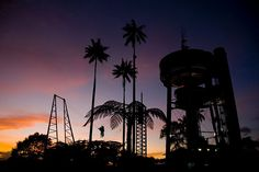 Atardecer de Chipre!! Seattle Skyline, Fair Grounds, Travel, Xmas, World, Cyprus, Places, Earth, Countries