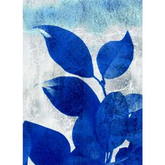 Nature, Plant, Leaf Photography, Cobalt Blue and White Fine Art... (€14) ❤ liked on Polyvore featuring home, home decor and wall art
