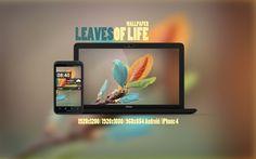 Leaves of Life wallpaper
