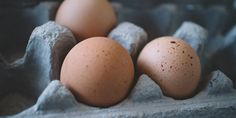 Making Hard Boiled Eggs, Egg Replacement, Best Weight Loss Pills, Eating Eggs, Chicken Eggs, Stop Eating, Healthy Hair, Healthy Foods, Healthy Weight