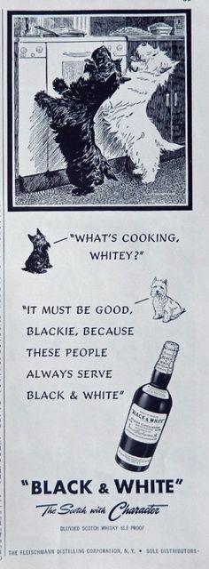 Black   White Scotch Whiskey  40 s Print ad  B W Illustration  what s cooking Whitey   Print Art