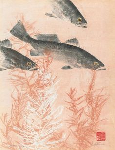 Trout Gyotaku by Heather Fortner