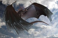 Black Dragon - Worth1000 Contests by tuter
