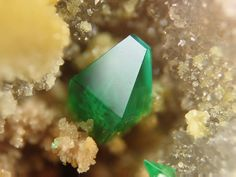 Torbernite - Pinhal do Souto Mine, Tragos, Chãs de Tavares, Mangualde, Viseu, Distrikt, Portugal FOV : 2 mm