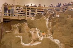 Visitors on tour at The Mammoth Site