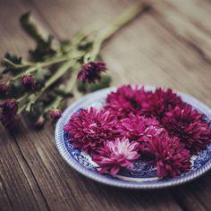 It's a flower-eey day!!   #flowers #sundayfunday #homedecor