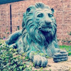 A lion statue in front of a castle. by expertpix on 500px