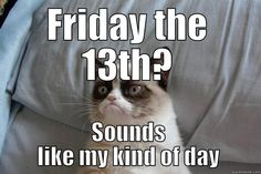 healthy living tips fitness program near me today Hump Day Quotes, Tuesday Quotes, Its Friday Quotes, Friday Humor, Grumpy Cat Meme, Grumpy Cat Quotes, Funny Cat Memes, Funny Me, Funny Humor