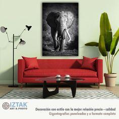 Bonito cuadro decorativo de elefante Red Sofa, Limited Edition Prints, Throw Rugs, Plank, Love Seat, Area Rugs, Fine Art Prints, Couch, Gallery