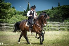 DSC 0344 : 2013, Butteri, Butteri Alta Maremma, Italy, May, horses