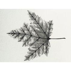 l e a f. #leaf #dots #drawing #stippling #rotring #ink #pointilism #black #pencil #rapidograph #blackink #art #artwork #ribart