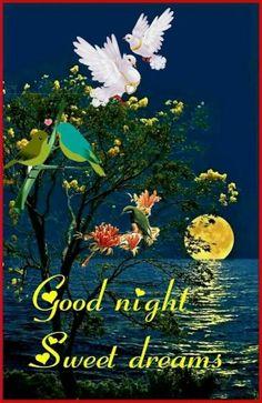 Good night sweet dreams my friend! Good Night Poems, Good Night I Love You, Good Night Greetings, Good Night Blessings, Good Night Messages, Good Night Wishes, Good Morning Gif, Good Night Sweet Dreams, Good Night Moon