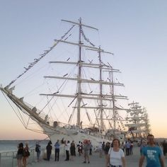 #veleiros #lisboa #santaapolonia #tallships #instagood