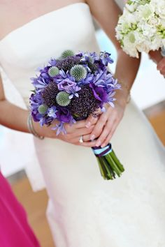 thistle, purple trachelium, lisianthus and agapanthus. marie labbancz photography