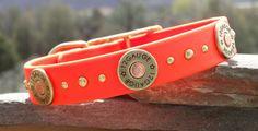 waterproof strong dog collar with 12 gauge shotgun shells in blaze orange, hunting dog collar, gun dog collar, big dog collar for boy dogs