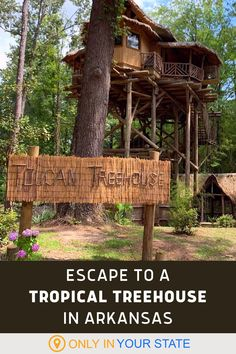 Enjoy a perfect summer vacation at this jungle themed treehouse in Arkansas. A tropical oasis, it's a beautiful destination all year, but shines in the summer with lake views, gorgeous gardens, nature trails and 250 acres of private jungle to explore. A unique staycation spot, this quirky retreat could easily be an escape for couples or the perfect family getaway. Native American Teepee, Jungle Gardens, Family Getaways, Local Attractions, Walk In Shower, Sandy Beaches, Tropical Plants, Lake View, Treehouse