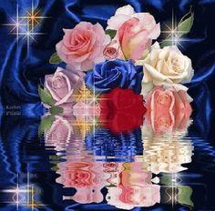 Lovely roses Animated Photo