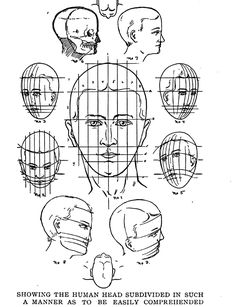 The Human Head and Face Divided in Proportions Easy to Understand and Memorize reminds me of the handout, my high school art teacher gave us when doing self portraits