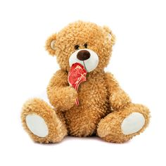 (3) Inici / Twitter Poesia Visual, Teddy Bear, Toys, Animals, Activity Toys, Animaux, Animal, Animales, Toy